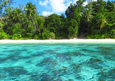 Therese Island Water and Beach, Seychelles