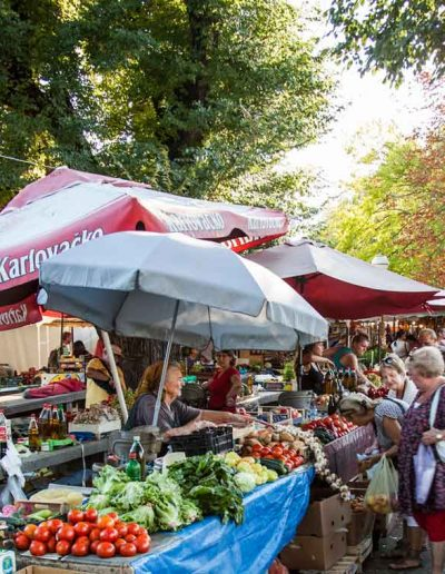 Local farmer markets